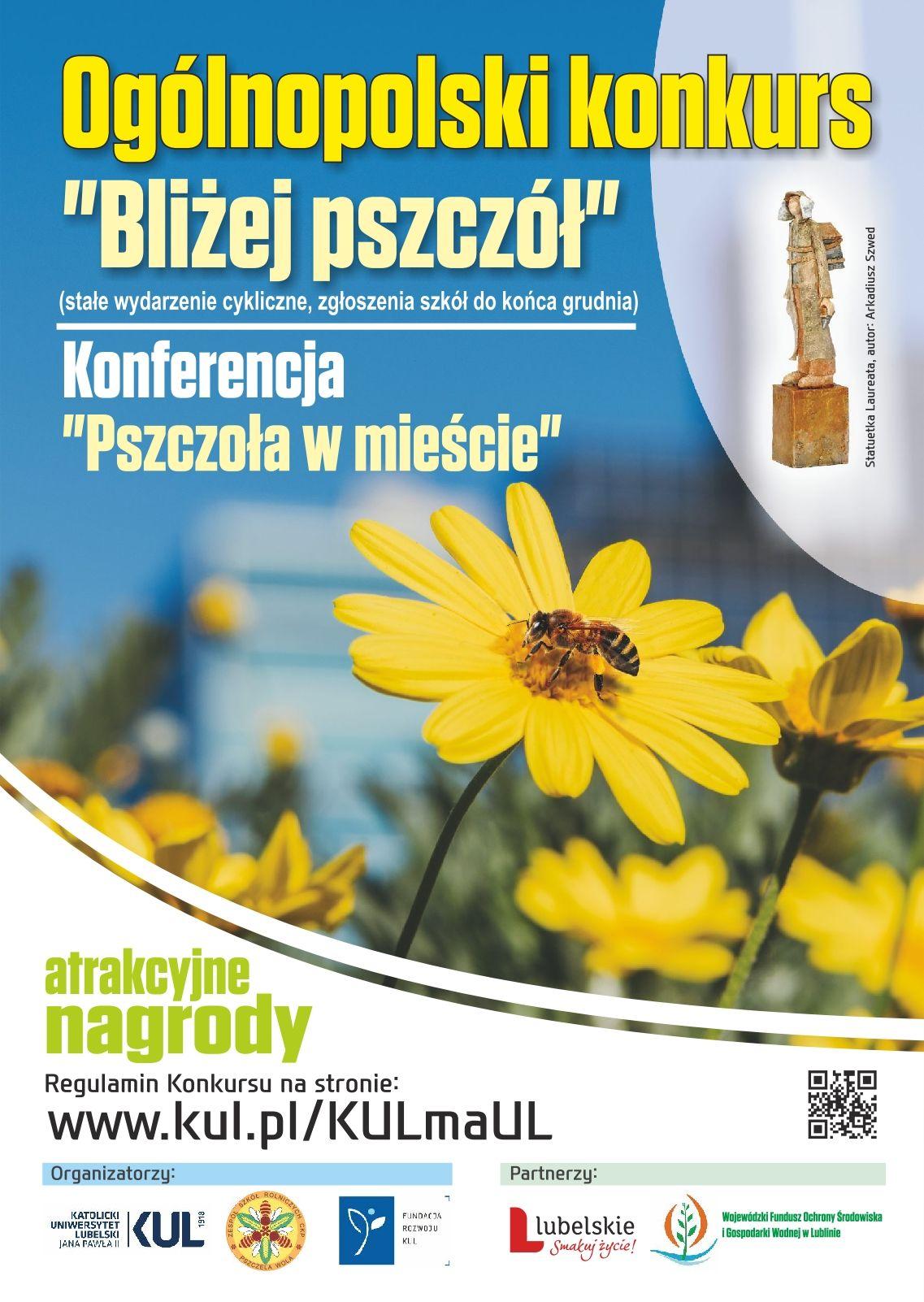 pszczola_w_miescie